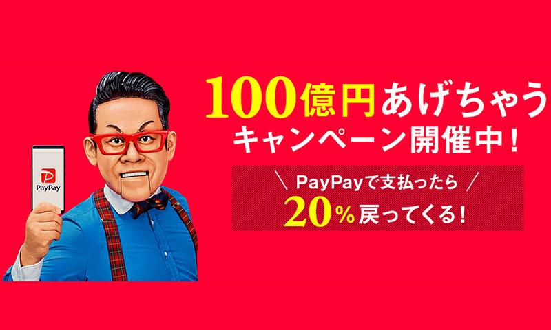 ビックカメラにてPayPay支払いでiPad Proを購入しました!のアイキャッチ画像